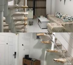 (华龙区)万利现代城2室1厅2卫40m²毛坯房